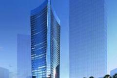 宁波钢铁项目建设期项目管理办公室的组建和运营