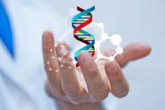 PMO在生物制药GMP生产环境中的实践——《PMO论文集(2019)》(电子版)