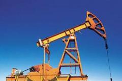 海洋石油工程项目管理办公室(PMO)建设及发展分析